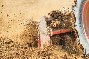 Spring Dirt