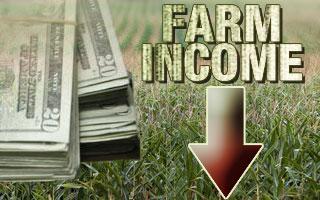 Farm Income 2015